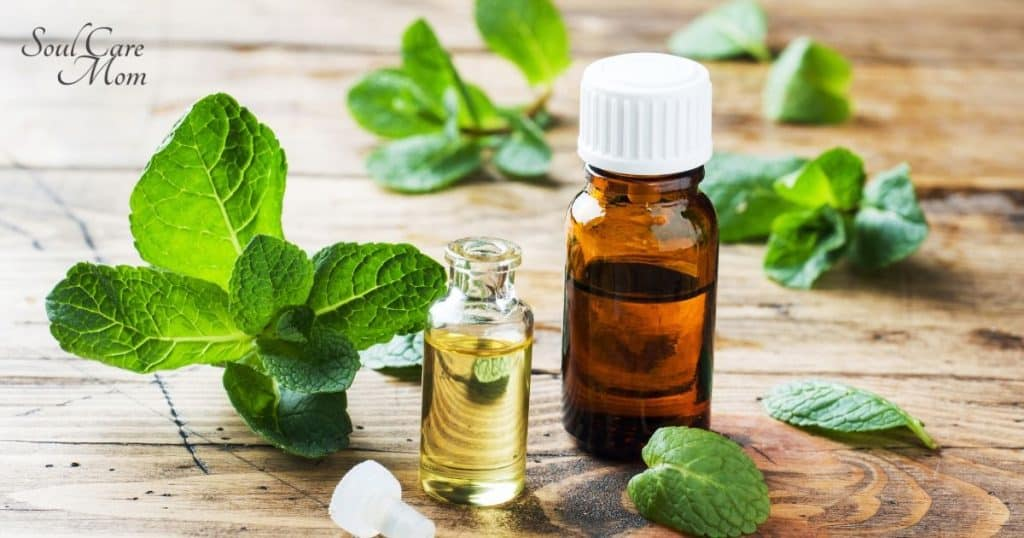 Best Essential Oils for Beginners - Soul Care Mom